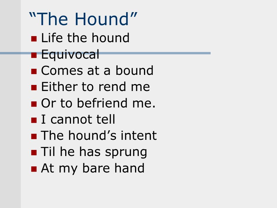 The Hound Life the hound Equivocal Comes at a bound