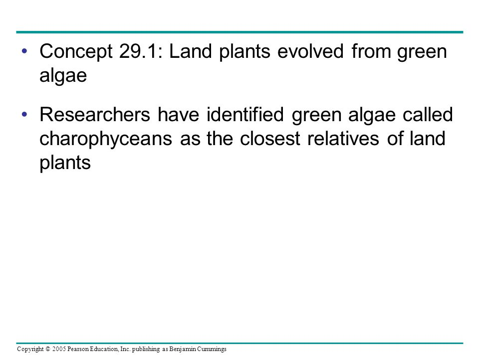 Concept 29.1: Land plants evolved from green algae