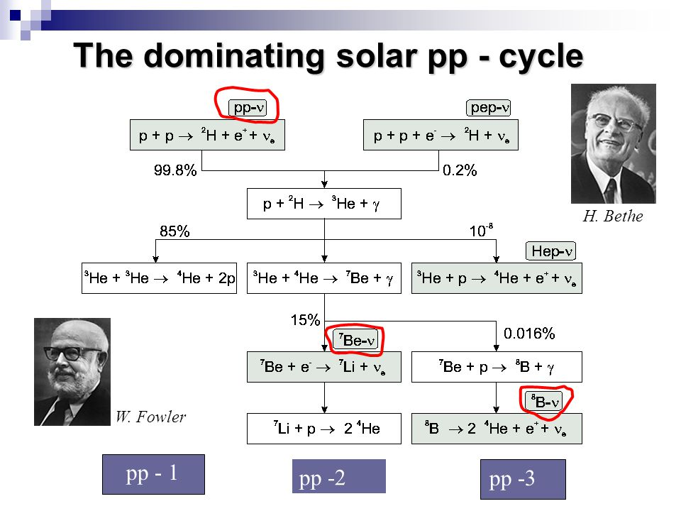 The dominating solar pp - cycle