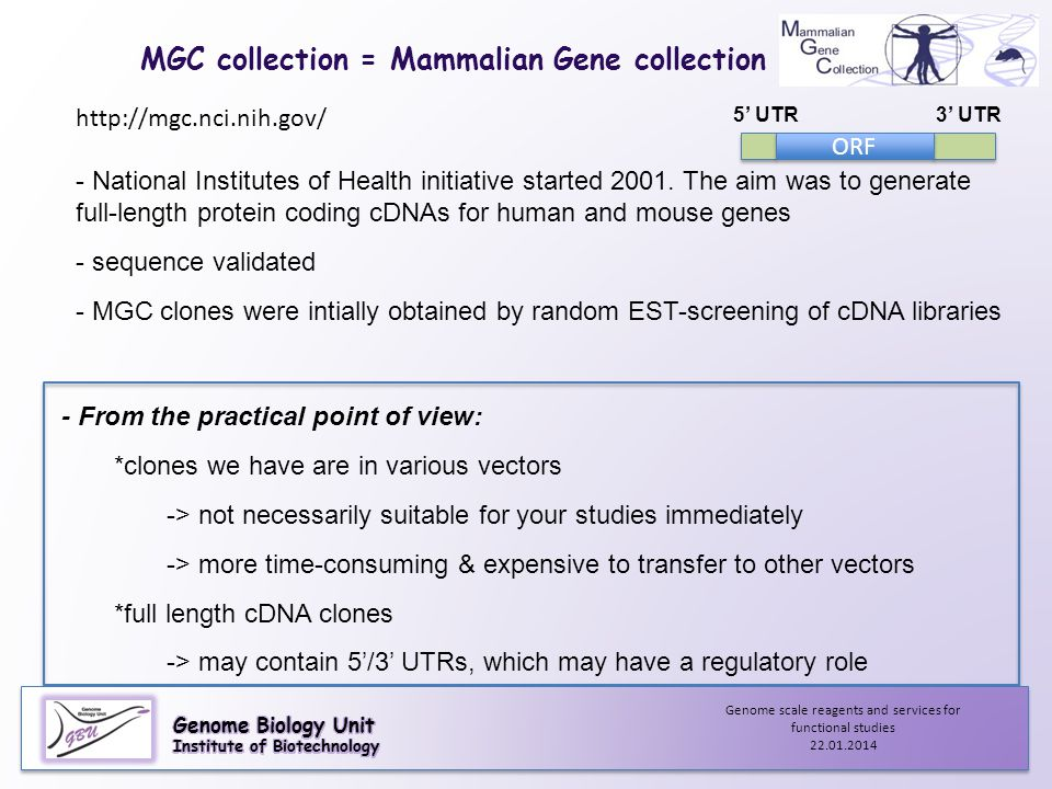 MGC collection = Mammalian Gene collection