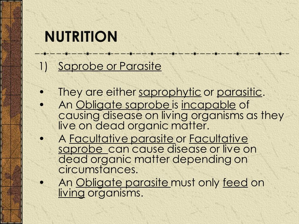 NUTRITION Saprobe or Parasite