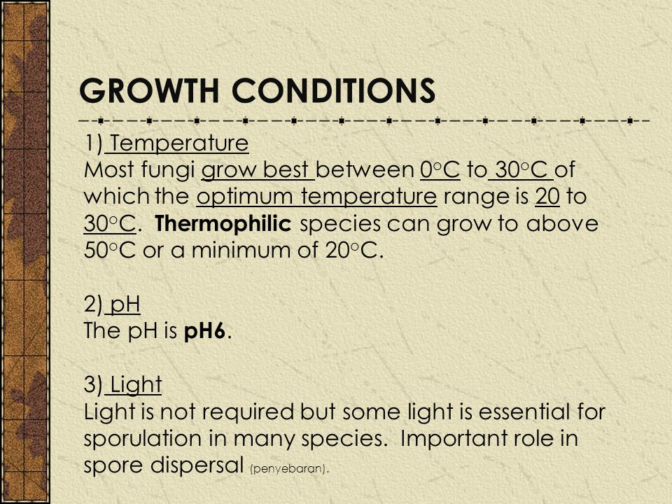 GROWTH CONDITIONS