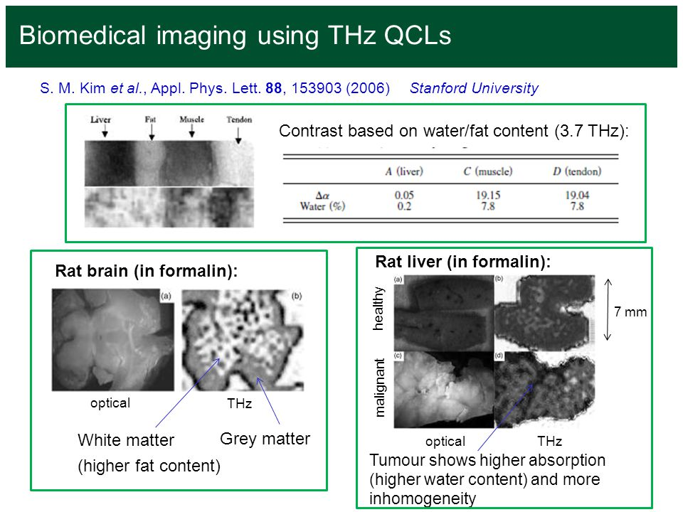 Biomedical imaging using THz QCLs