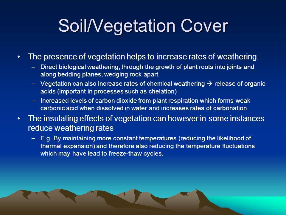 Soil/Vegetation Cover
