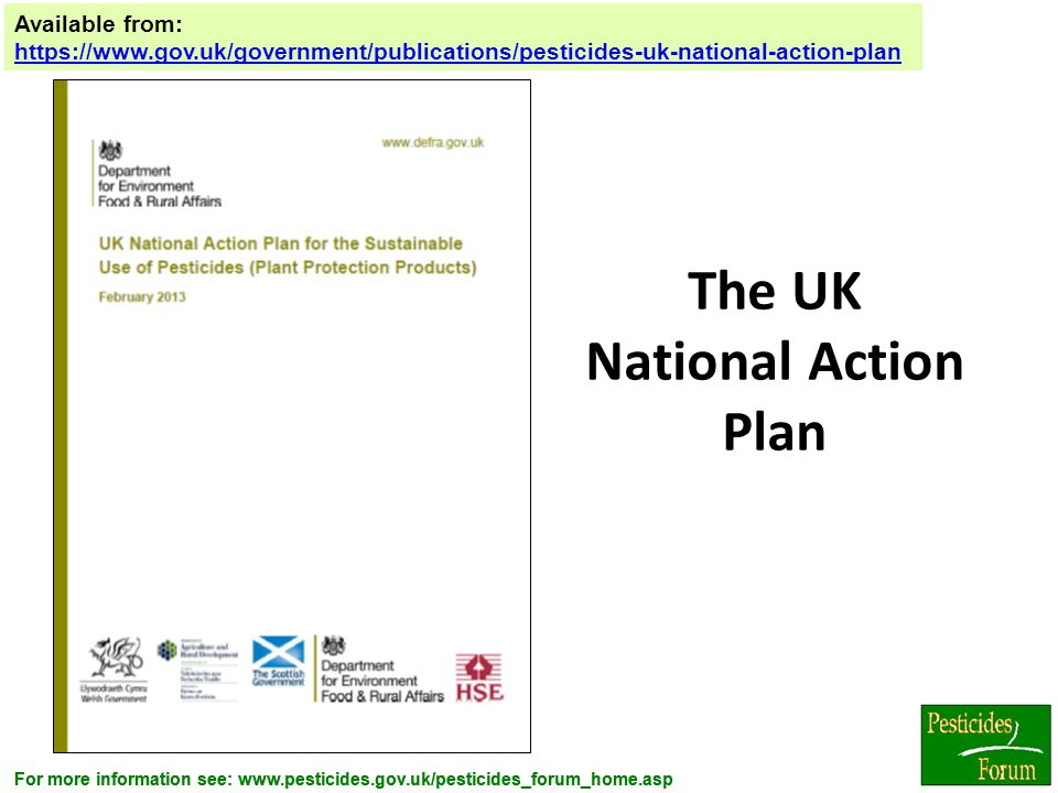 The UK National Action Plan