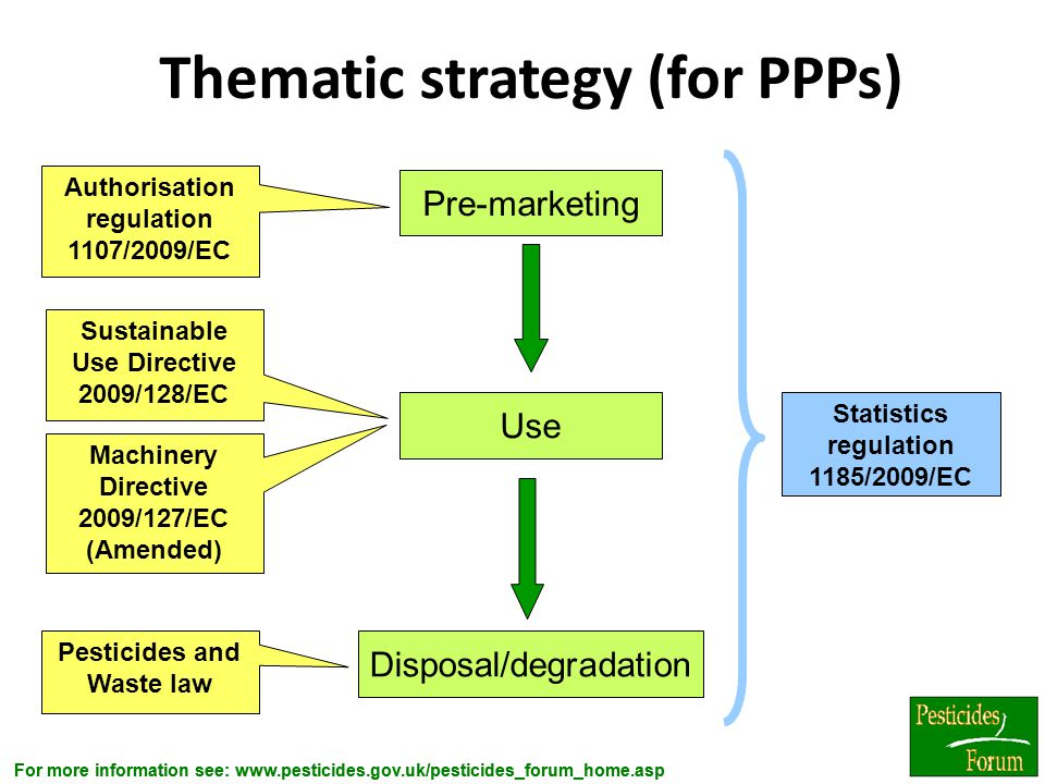 Thematic strategy (for PPPs)