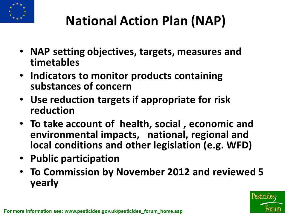 National Action Plan (NAP)