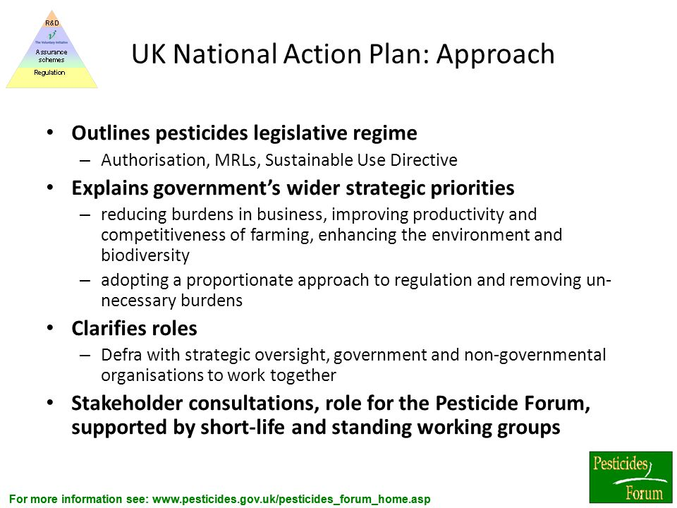UK National Action Plan: Approach