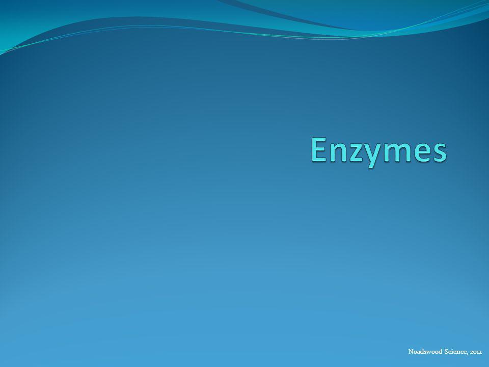 Enzymes Noadswood Science, 2012