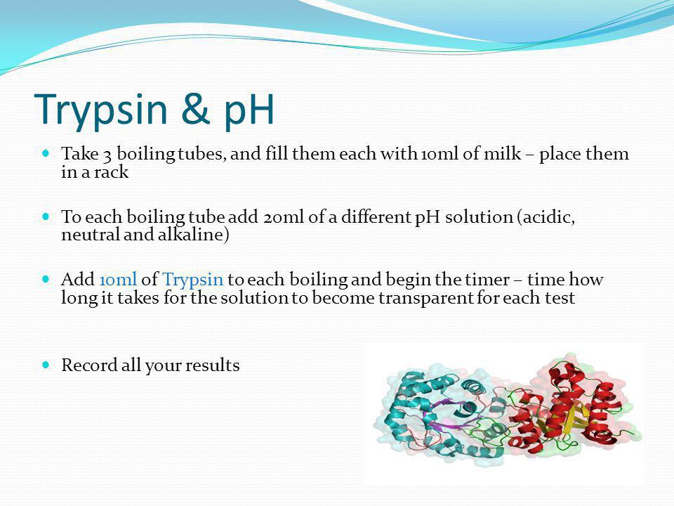 Trypsin & pH Take 3 boiling tubes, and fill them each with 10ml of milk – place them in a rack.