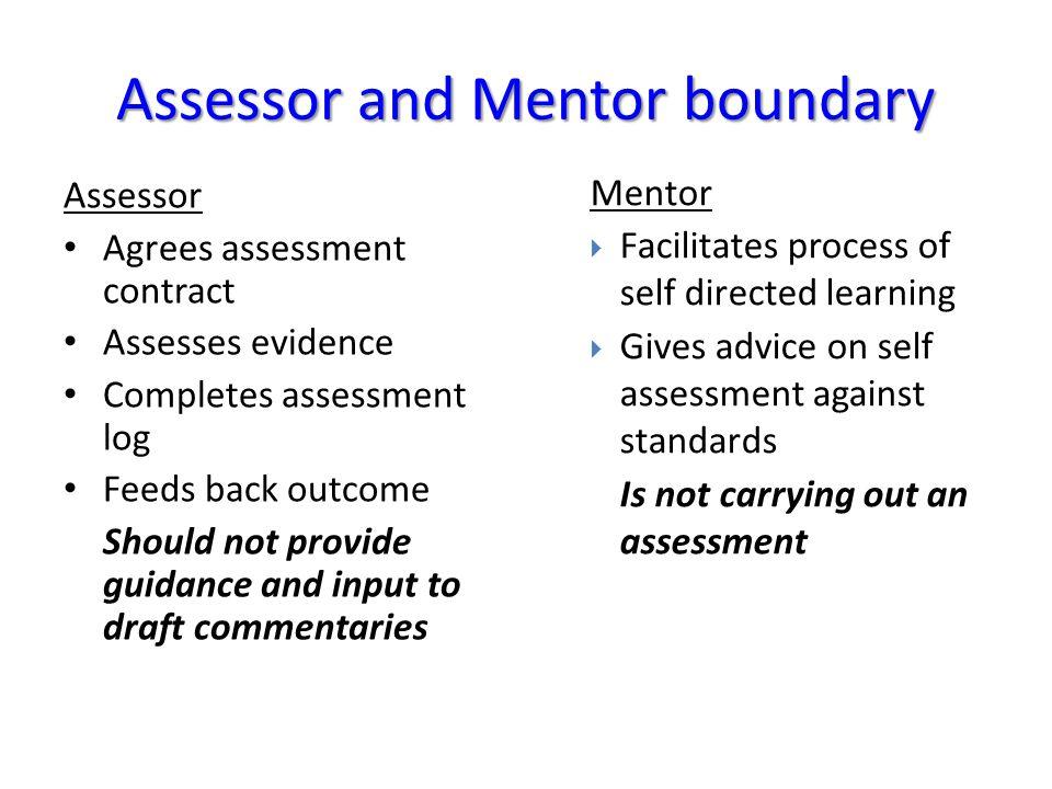 Assessor and Mentor boundary