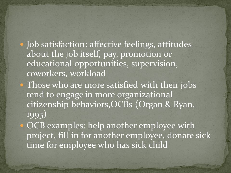 Job satisfaction: affective feelings, attitudes about the job itself, pay, promotion or educational opportunities, supervision, coworkers, workload