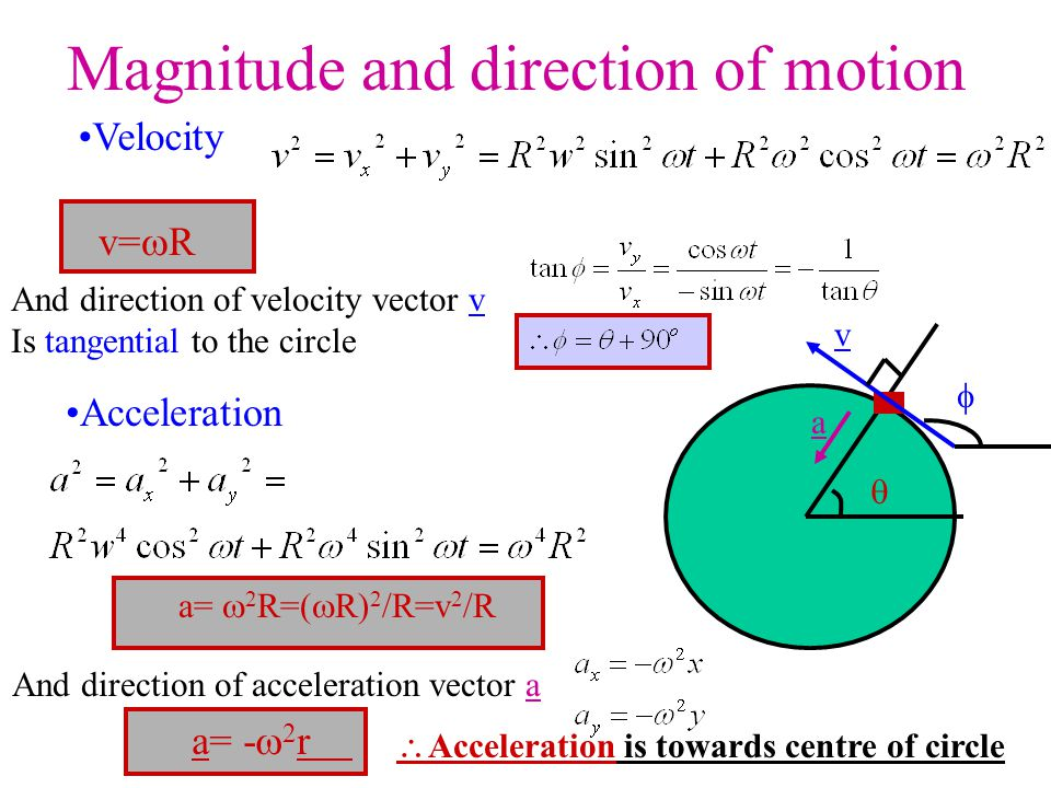 Magnitude and direction of motion