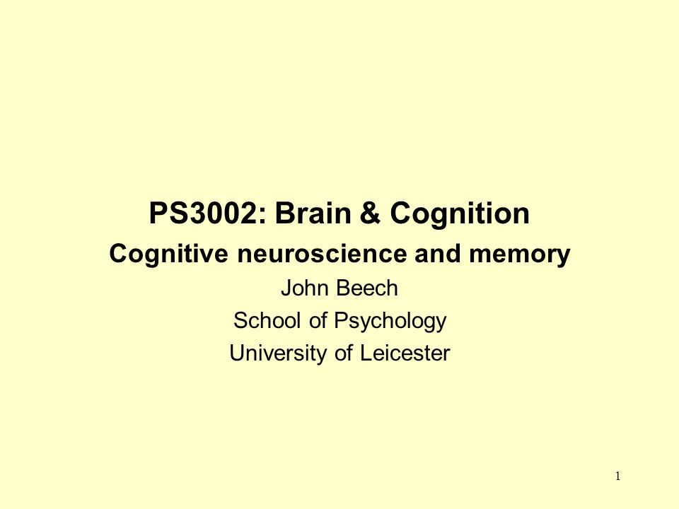 Cognitive neuroscience and memory