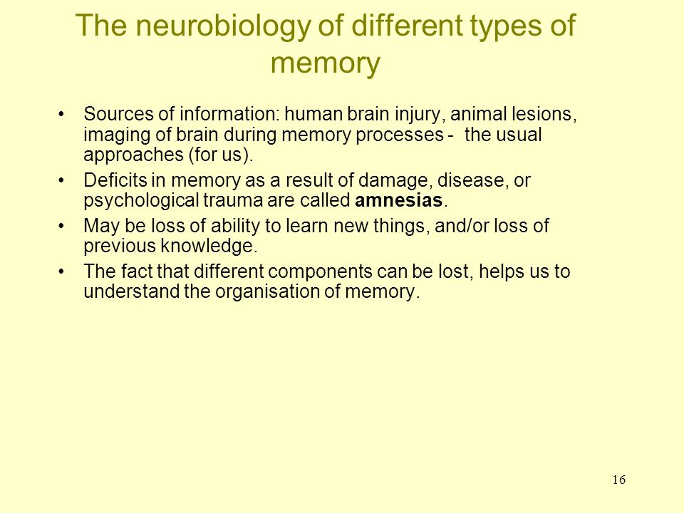 The neurobiology of different types of memory