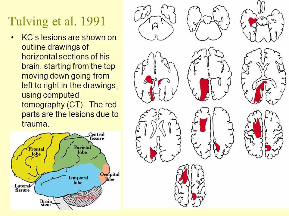 Tulving et al. 1991