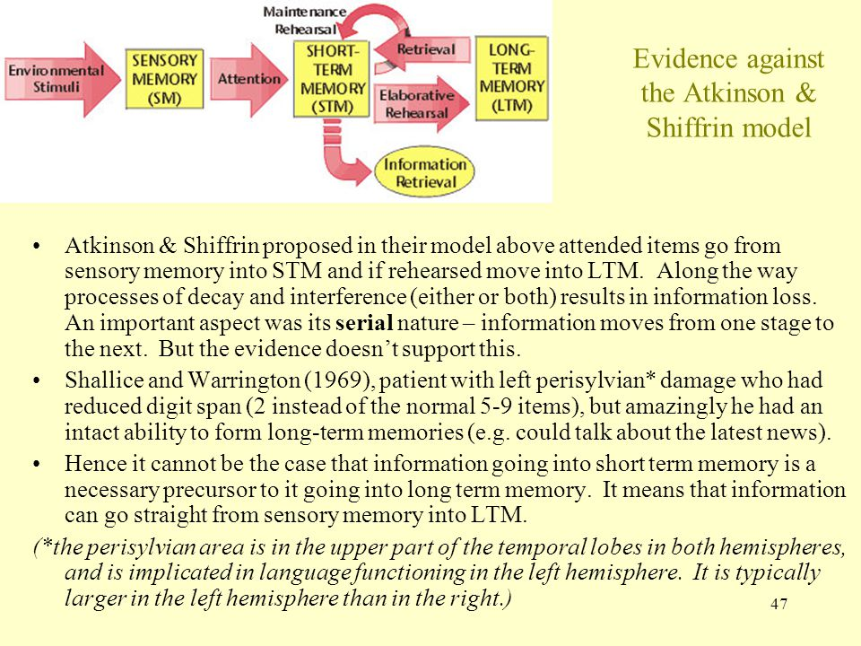 Evidence against the Atkinson & Shiffrin model