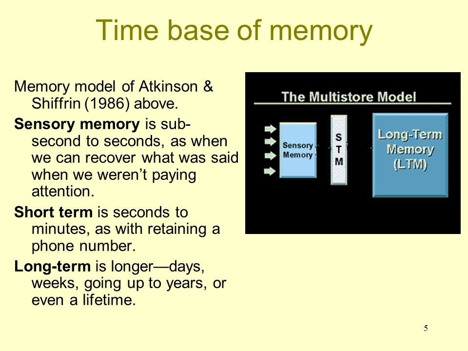 Time base of memory Memory model of Atkinson & Shiffrin (1986) above.