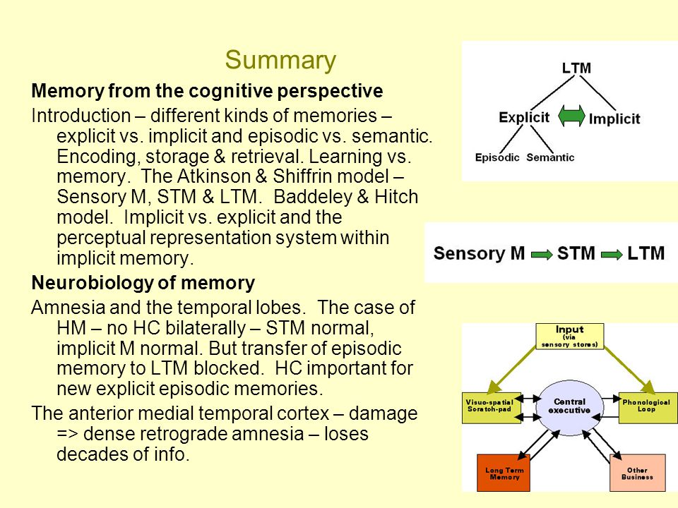 Summary Memory from the cognitive perspective
