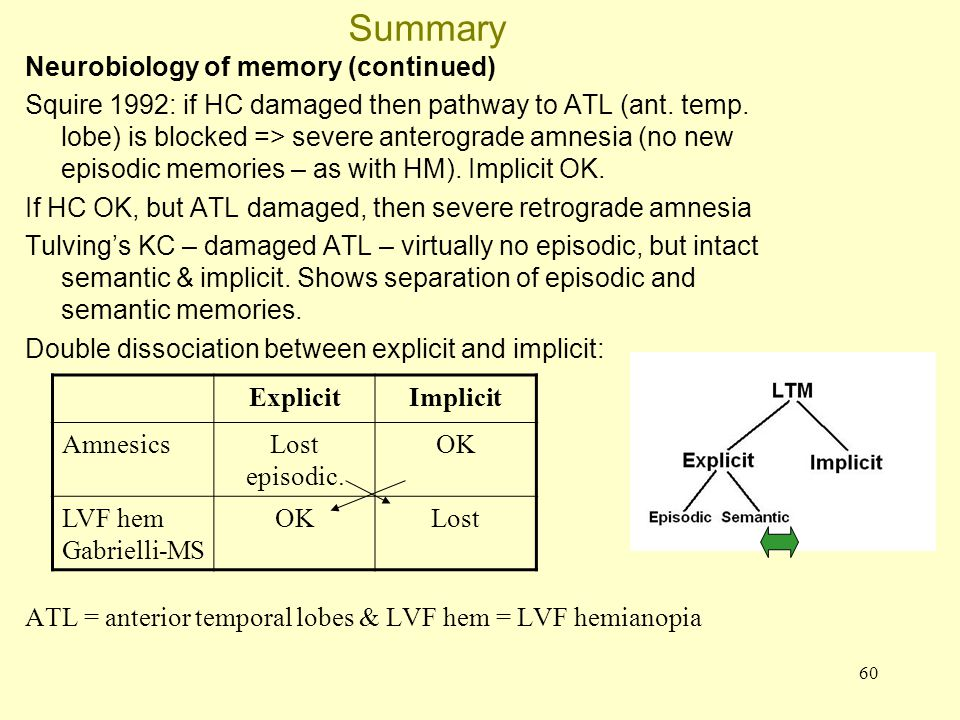 Summary Neurobiology of memory (continued)