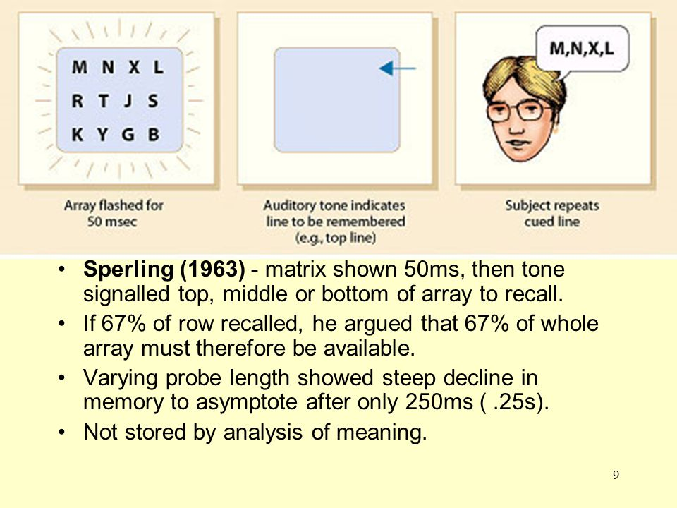 Sperling Sperling (1963) - matrix shown 50ms, then tone signalled top, middle or bottom of array to recall.