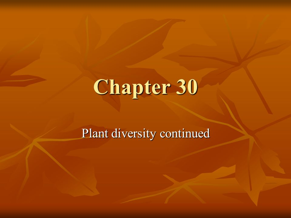Plant diversity continued