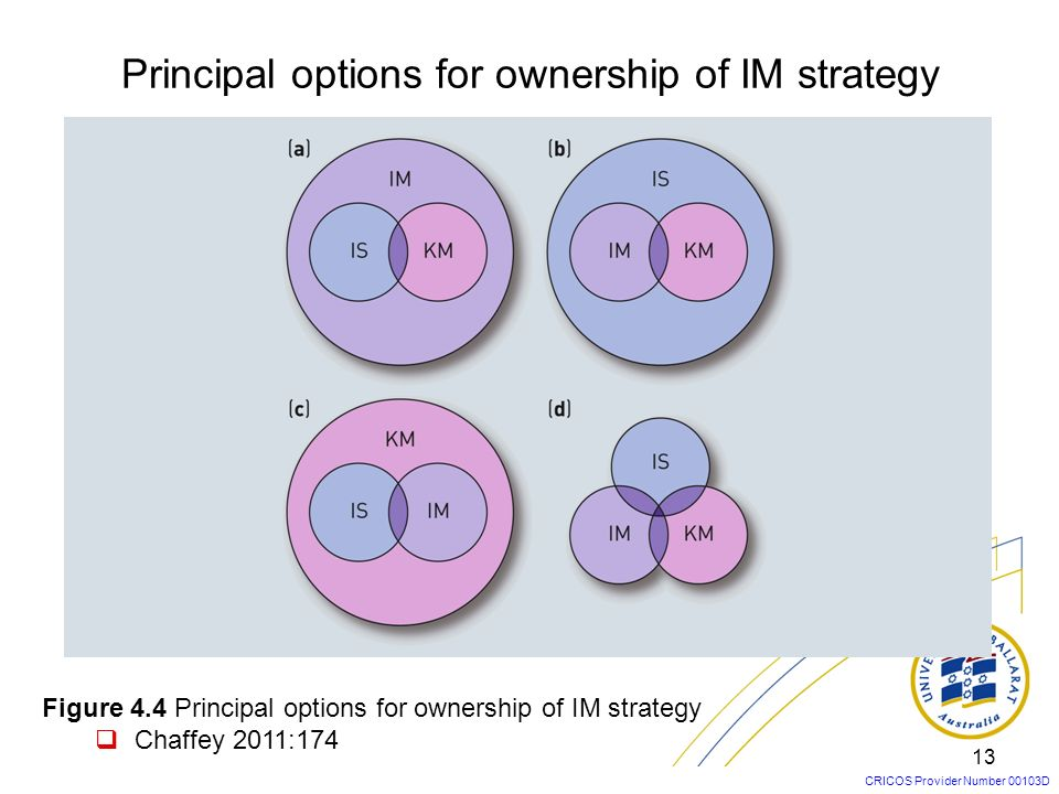 Principal options for ownership of IM strategy