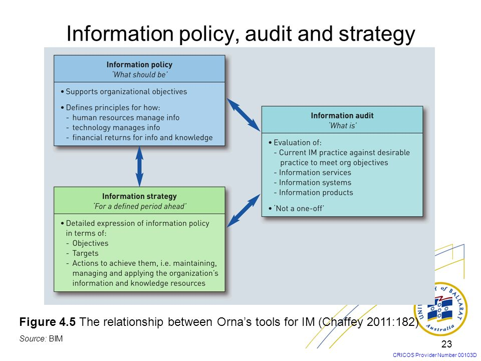 Information policy, audit and strategy