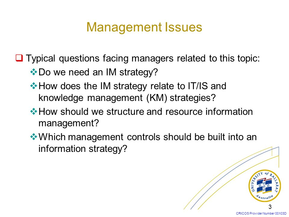 Management Issues Typical questions facing managers related to this topic: Do we need an IM strategy