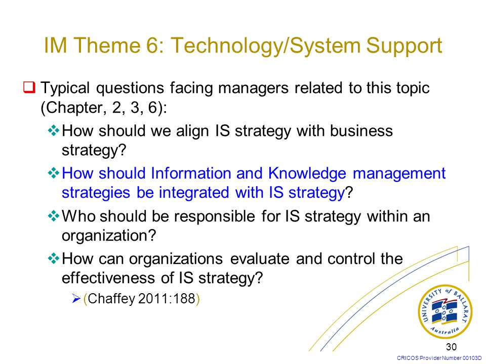 IM Theme 6: Technology/System Support