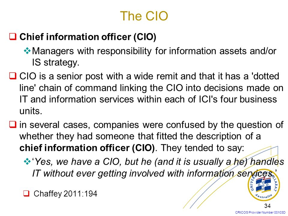 The CIO Chief information officer (CIO)