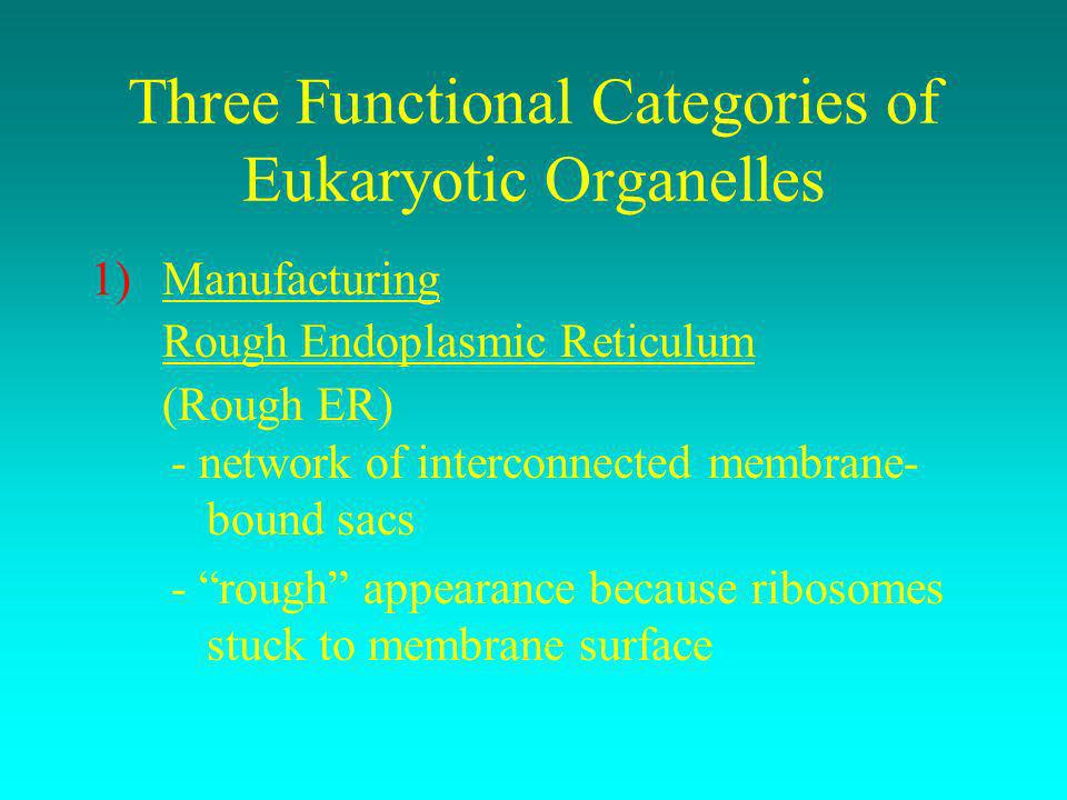 Three Functional Categories of Eukaryotic Organelles