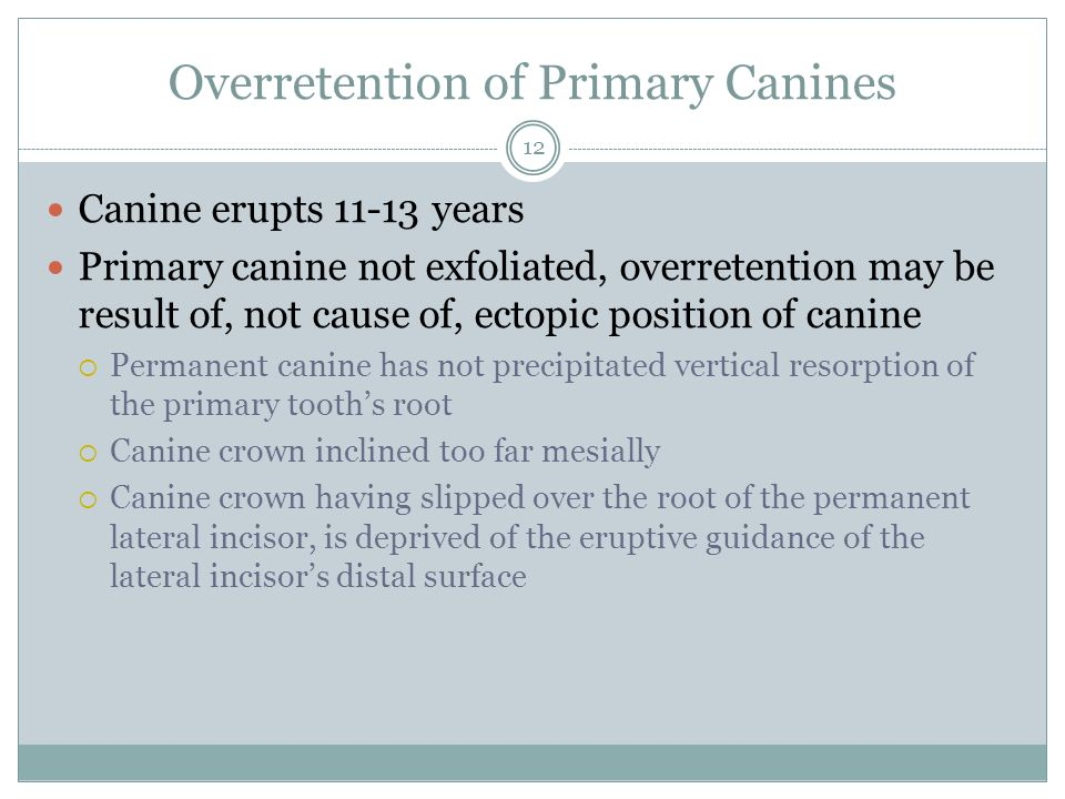 Overretention of Primary Canines
