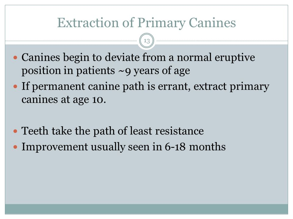 Extraction of Primary Canines
