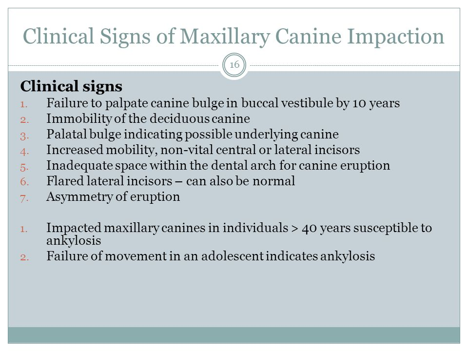 Clinical Signs of Maxillary Canine Impaction