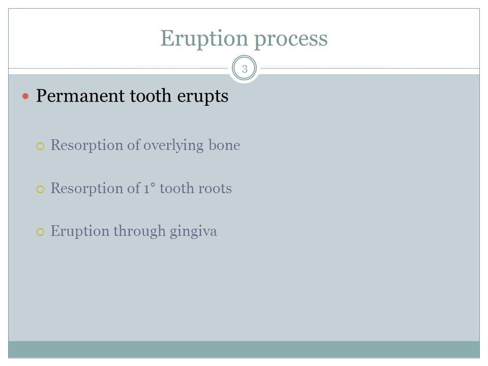 Eruption process Permanent tooth erupts Resorption of overlying bone