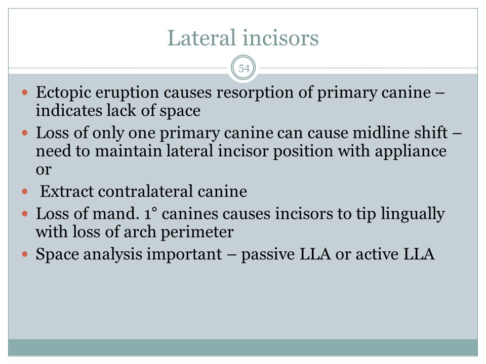 Lateral incisors Ectopic eruption causes resorption of primary canine – indicates lack of space.