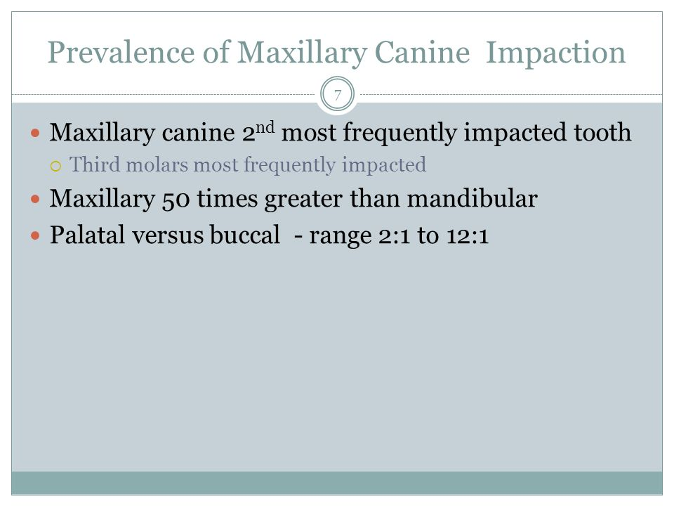 Prevalence of Maxillary Canine Impaction