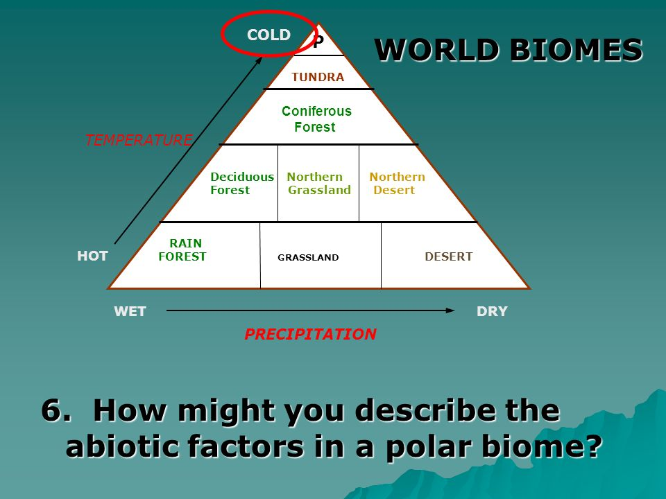 6. How might you describe the abiotic factors in a polar biome