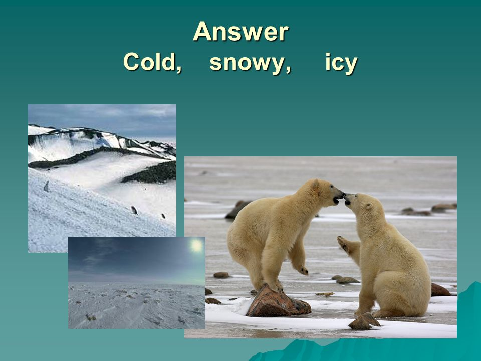 Answer Cold, snowy, icy