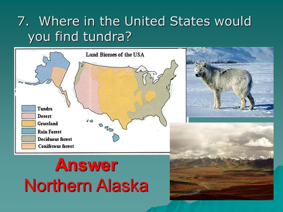 Answer Northern Alaska