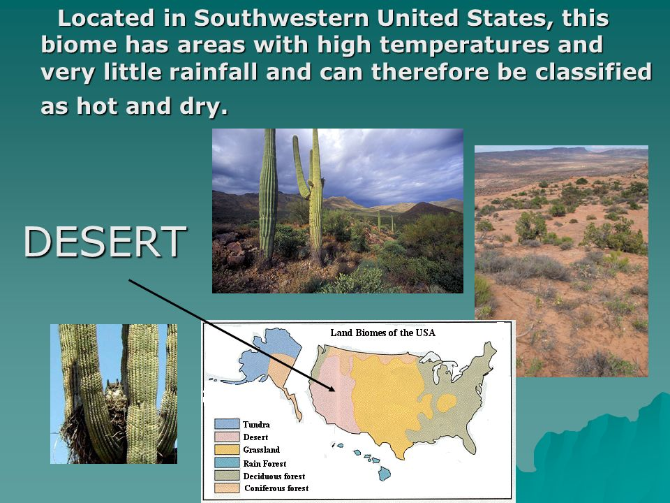 Located in Southwestern United States, this biome has areas with high temperatures and very little rainfall and can therefore be classified as hot and dry.