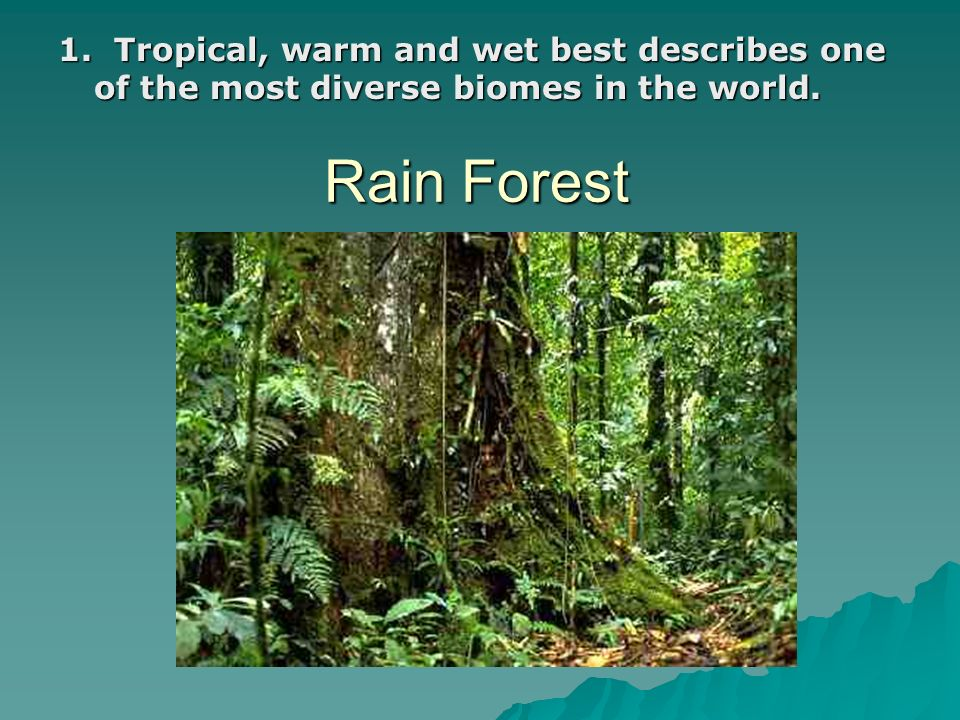 1. Tropical, warm and wet best describes one of the most diverse biomes in the world.