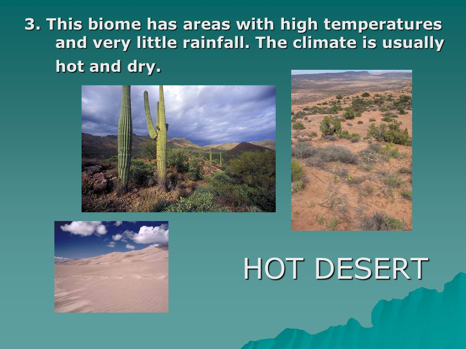 3. This biome has areas with high temperatures and very little rainfall. The climate is usually hot and dry.