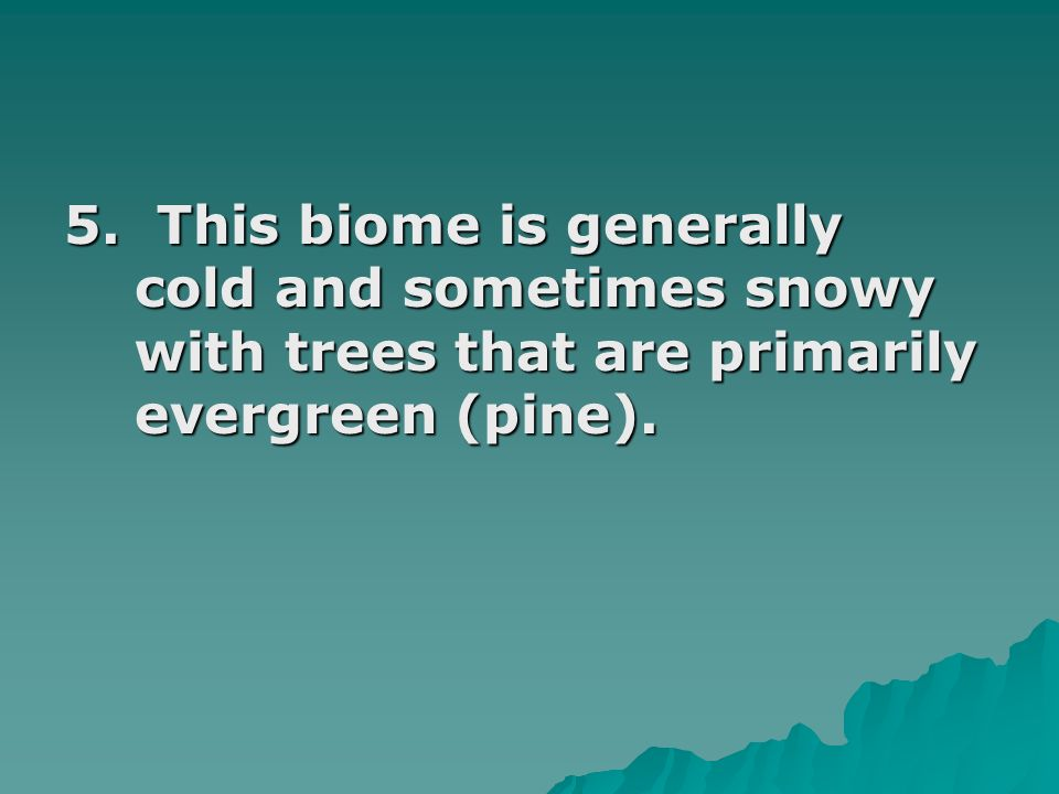 5. This biome is generally cold and sometimes snowy with trees that are primarily evergreen (pine).