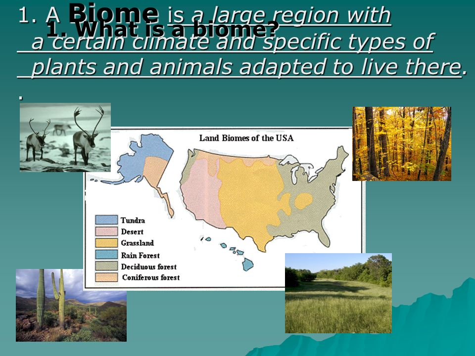1. A Biome is a large region with