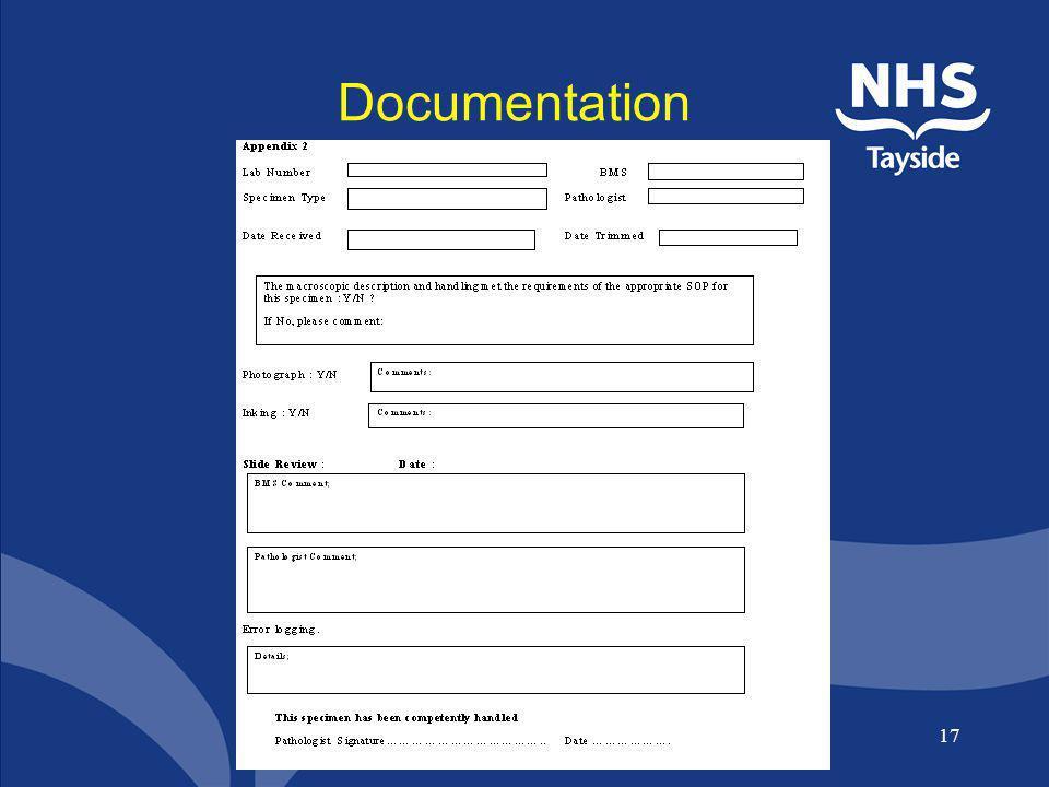 Documentation Audit form goes here