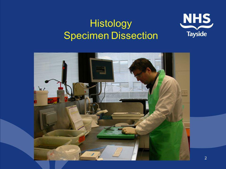 Histology Specimen Dissection