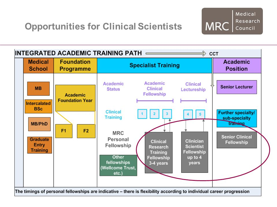 Opportunities for Clinical Scientists