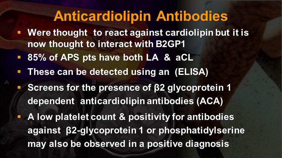 Anticardiolipin Antibodies